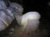 Ochozská jeskyně - Beránek